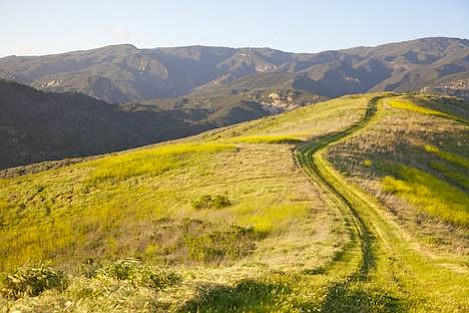 Ridgetop views and rugged backcountry make El Capitan a great place to get out on the trails. Join the Trails Council as we explore the Bill Wallace trail April 11.