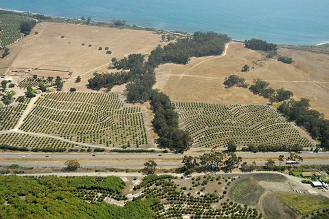 <strong>ONE LAST TRY:</strong>  Development and land-use codes for coastal parcels, like the idyllic agricultural slice of the Gaviota pictured above, remain in the forefront as the County Supervisors and California Coastal Commission continue to haggle over Santa Barbara's attempts to update its various land-use policies. On the brink of rejecting the state agencies requests, the county voted this week to explore — for the final time — the possibility of compromise.