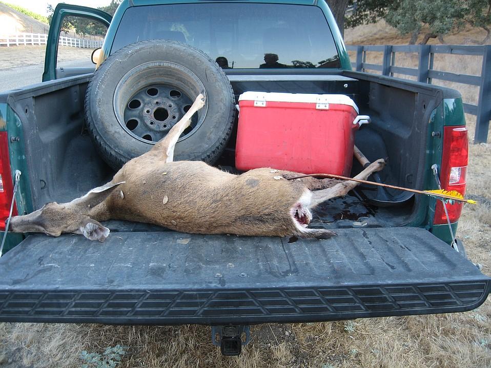 "A nursing doe allegedly shot by the ""Robin Hood"" poacher in Rancho Ynecita last year"
