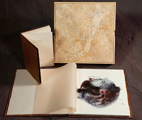 Mary Heebner's <em>Unearthed</em> combines poetry and memoir with drawing, printmaking, and painting.