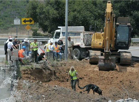 "6/21/11  In the ongoing search for the remains of  Ramona Price, Caltrans heavey machinery operators and cadaver sniffing dogs work with local law enforcement to excavate an ""area of interest"" in Goleta at the intersection of Calle Real and the recently-demolished Winchester Canyon overpass."
