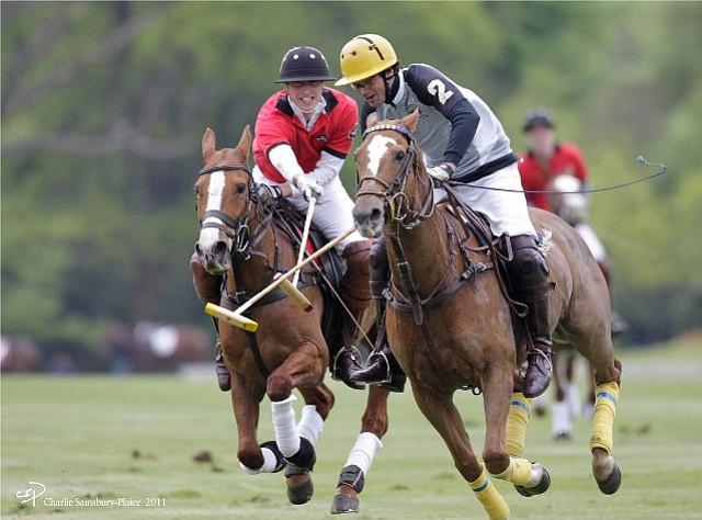 Prince William, Duke of Cambridge, playing in a polo match