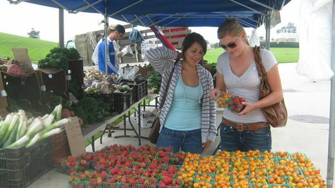 Farmers Market at Santa Barbara Community College