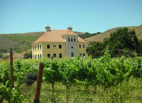 Sweeney Canyon Vineyard