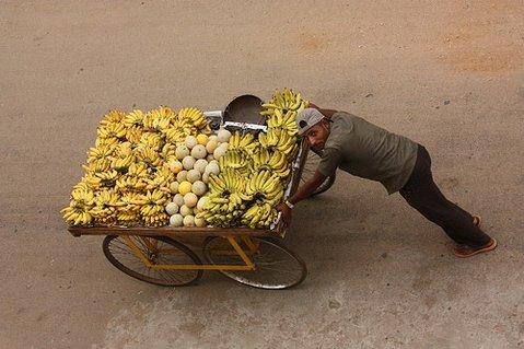 Selling bananas in Mysore