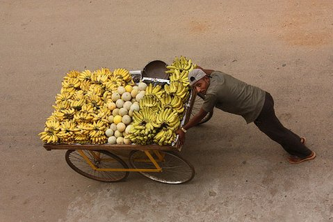 Selling bananas in Mysore