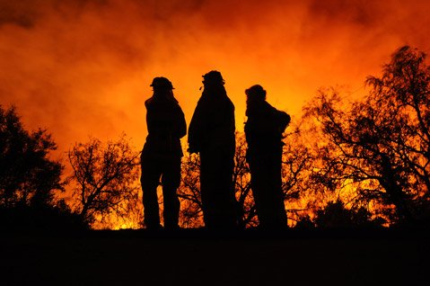 Firefighters assess their plan of attack during the 2008 Tea Fire.