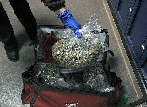 Marijuana seized from Walter Stanley's home