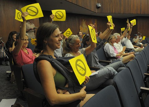 Susan Robinson (foreground) and other members of the public showed their opposition for proposed parking fees at a recent county hearing.