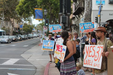 Supporters gather on the corner of State and Anapamu streets to rally for Proposition 37.