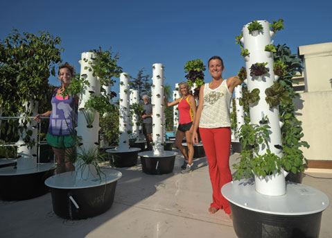 Chapala Gardens Brings Rooftop Tower Farming to SB