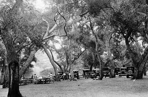 Tucker's Grove