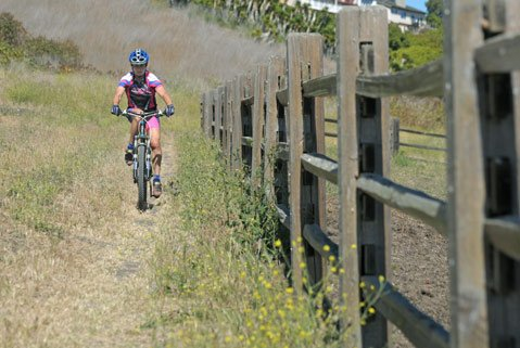 """Back when she was racing motorcycles, Sue Fish was best known as """"The Flying Fish"""" for her high-profile antics on the race course. Today, Fish — a longtime Santa Barbara resident — is more inclined to take to the trails on a dirt bike, but this November, she was inducted into the Motorcycle Hall of Fame for being one of the first women to race professionally — and competitively — against male motocross riders."""
