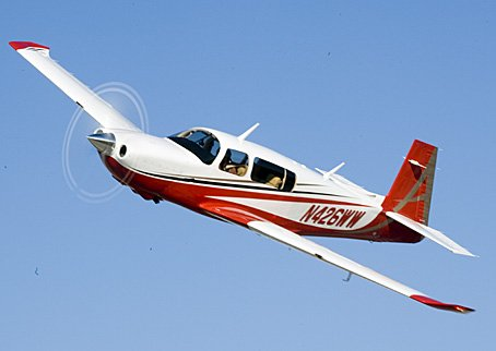 A single-engine Mooney aircraft, the same model of plane piloted by Nicol Wilson