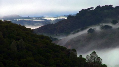 &lt;em&gt;The Santa Ynez River Wilderness&lt;/em&gt;