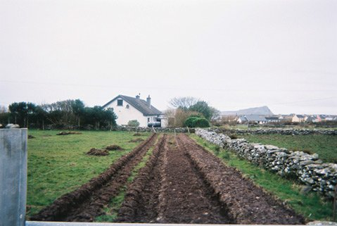 <b>A PLACE CALLED HOME:</b>  During his two years in Ireland, American-raised Michael Fitzgerald visited his family's farm (pictured), learning from his uncle Jack how to cut seamless rows in sod, set potatoes, mend fences, and drive the tractor.