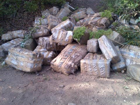 Bales of marijuana near Arroyo Quemada Beach