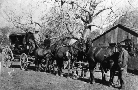 <b>ALL ABOARD:</b>  Las Cruces was a major stagecoach stop in the 1860s.