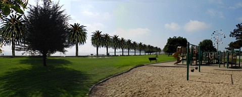 <b>WOULD PALMS PROTECT?</b>  One idea floated by Friends of Goleta Beach to protect the park is Canary Island date palms along the beach-lawn interface, as shown in the rendering above.
