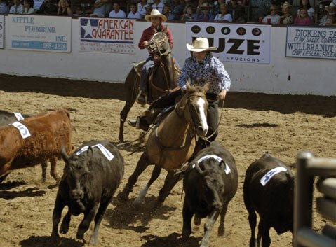 <b>YOU HOOF TO SEE THIS:</b>  The Fiesta Stock Horse Show & Rodeo has been a mainstay of Old Spanish Days. Area riders compete in events such as team penning, barrel racing, and roping.