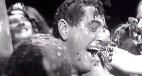 <b>IN VINO VERITAS:</b>  Rock Hudson starred in John Frankenheimer's <i>Seconds</i>, along with some grape-stomping Mountain Drivers au naturel
