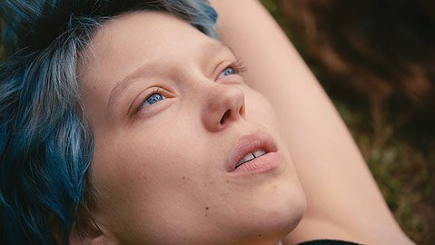 <em> Blue is the Warmest Color</em>