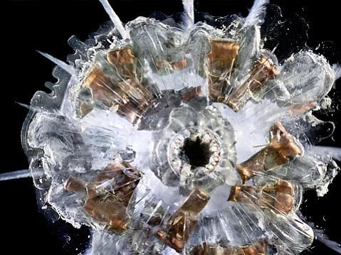"<b>HIGH IMPACT:</b> In ""9mm Automatic,"" Deborah Bay captures the jewel-like shine of shrapnel embedded in Plexiglas."