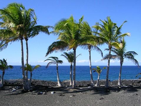 <b>PARADISE LOST:</b> Tsunamis and now underwater mayhem mar the tranquility of Hawai'i's Kona Coast.