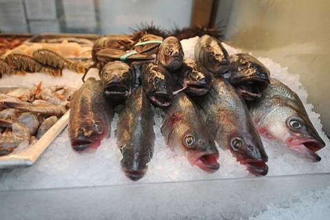 Seafood for sale at the Santa Barbara Fish Market