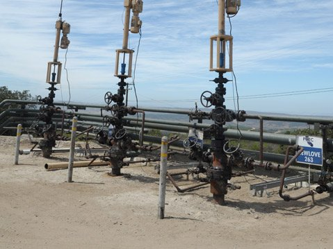 <b>P IN A POD:</b>  Ninety-six cyclic-steaming wells like the ones seen here — a group of wells is known as a pod — dot Pacific Coast Energy Company's Orcutt Hill oil field. The company has recently applied for 96 more, the approval of which could depend on Measure P.