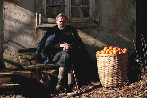 <em>Tangerines </em>