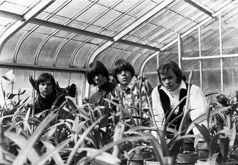 <b>PUSH IT:</b> Neil Norman, son of famed music man (and GNP Records founder) Gene Norman, is behind the new documentary <i>The Seeds: Pushin' Too Hard</i>, which screens on Saturday, March 7 at the Plaza Playhouse Theater.