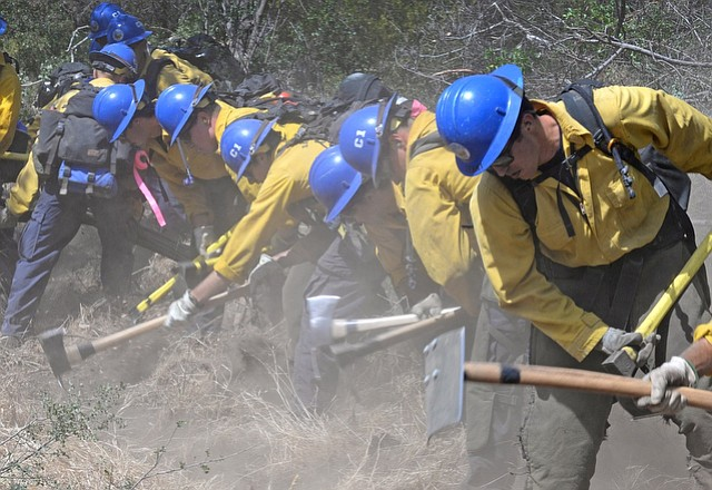 Santa Barbara County Fire Department's wildland firefighters Crew 1-1 and Crew 1-2 work to clear a line while training near their Camp at Cachuma Lake.