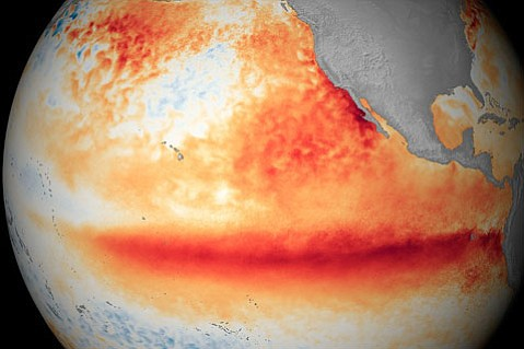 <strong>HEATING UP: </strong> This image shows how much warmer sea surface temperatures are now compared to the average from 1981-2010. Red patches along the equator signal this year's El Niño will pack quite a punch.
