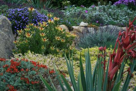 A garden designed by Pat Brodie.