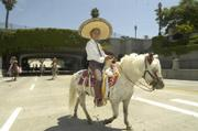 A wee vaquero rides a wee horse up State Street in the annual Fiesta Equestrian Parade.