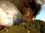 Large flames reveal on a ridge of the Zaca Fire, August 3.