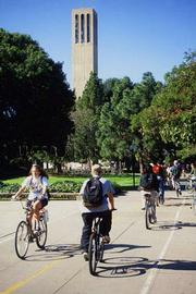 UCSB bike path near Storke Tower