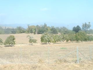 Bishop Ranch as seen from Glen Annie.