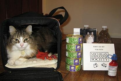 Lisa's cat is well-prepared for an emergency! Are you? Is your cat?
