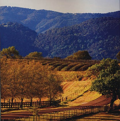 The Santa Ynez Valley
