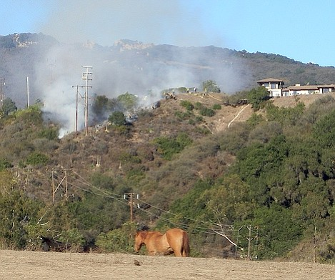 While horses gaze in the foreground, fire fighters work to contain this fire that appears to have been started by Edison power line work.