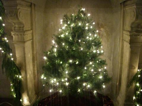 A Christmas tree from the Casa de Maria holiday concert.