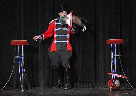 Cats jumping from great heights was just one of the many amazing stunts performed in juggler-extraordinaire Gregory Popovich's Comedy Pet Theater.