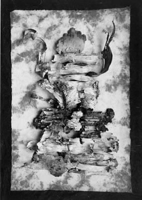 "Paul Caponigro's ""Woodspirit"" (2004)."