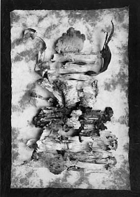 """Paul Caponigro's """"Woodspirit"""" (2004)."""