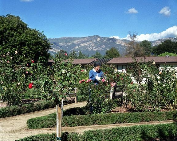 Valle Verde retirement home's organic landscaping.