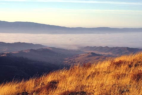 The view from Figueroa Mountain.