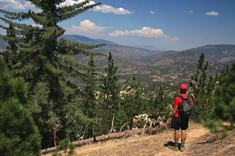 Pine Mountain is one of the highest peaks in Ventura County and thus a great hike for breathtaking vistas.