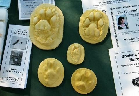 "Participants of the ""Tracks, Scats, Rubbermolds and Stories Told"" program will make a plaster cast from a rubber mold of a paw or hoof of an animal."